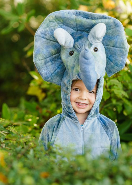 A Roaring Dinosaur Birthday Party